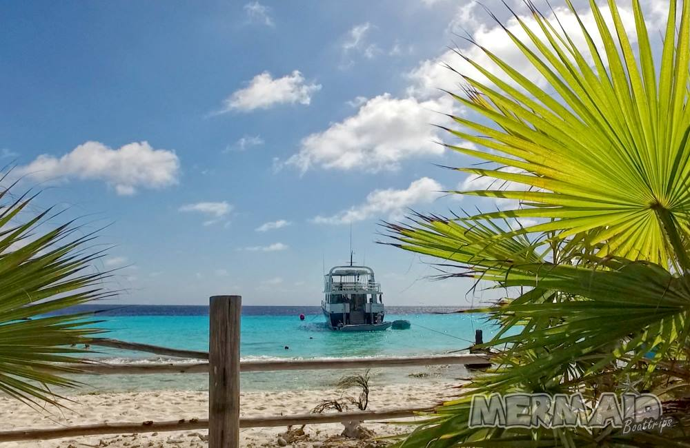 Mermaid boattrips Curaçao